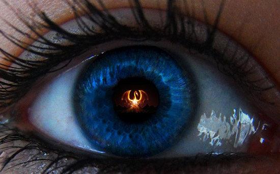 blue-eyed-dragon-feat